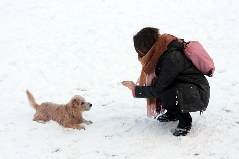 Playing with Jamie in the snow